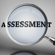 Don't Guess. Assess. OR Putting Assessments Under the Magnifying Glass